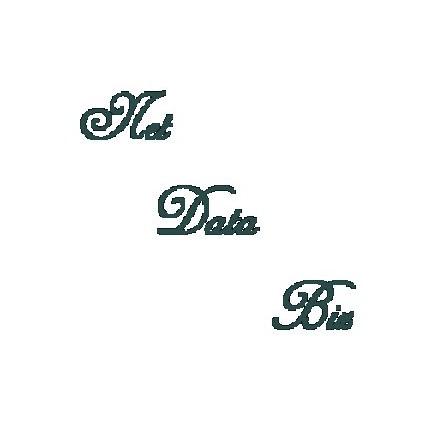 NetDataBiz