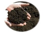 PermacultureOrganic